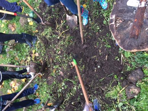 students use shovels to dig in the garden