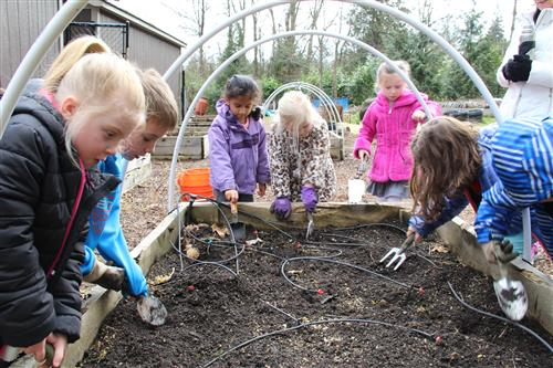 young students dig up weeds in the garden