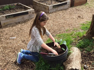 Girl planting a plant in the garden