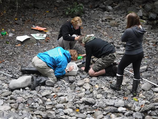 Students test water samples at Eagle Creek