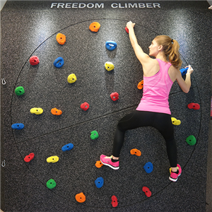 Freedom Climber rock wall