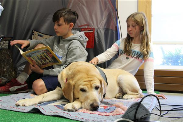 students reading to a yellow labrador dog
