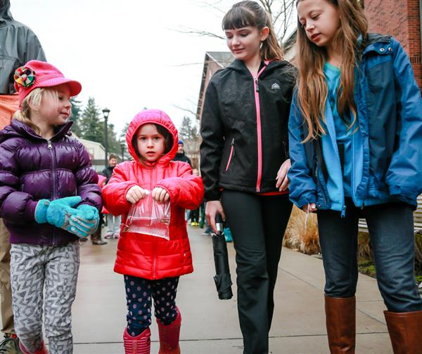 Kindergartners and 6th graders walk to the river carrying baby salmon